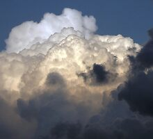 Cloud Study No. 9 by Max Buchheit
