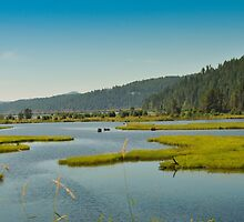 Idaho, Lake Pend Orielle, Back Road To Montana by jcimagery