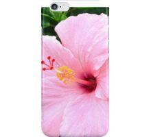 Hibiscus Beauty iPhone Case/Skin