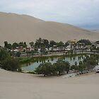 Oasis Huacachina by jeffro796