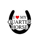 I heart My Quarter Horse by Tony  Bazidlo