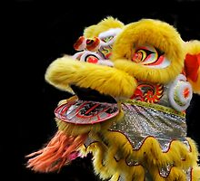 Chinese Lion Dancing by heatherfriedman