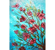 Cherry Blossom Charmers  Photographic Print