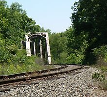 Railroad Bridge on the CSX Line by Sheila Simpson