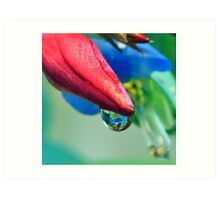 Waterdrop Reflection Art Print