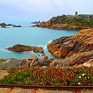 Coast by Nicholas Averre
