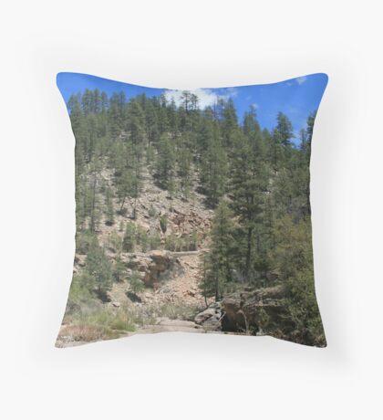 northern arizona Throw Pillow