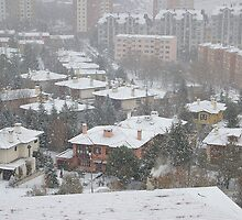 Snow in Ankara by Akif  Kaynak