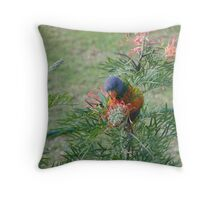 Rainbow Lorikeet & Red Grivellia Throw Pillow