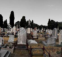 Melbourne General Cemetery, Victoria by Darren Wright