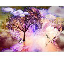 Vuelos Photographic Print