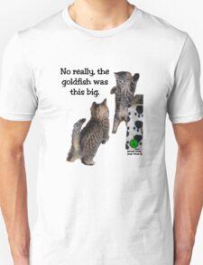 This Big T-Shirt