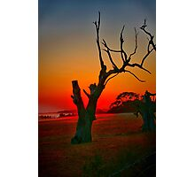 """""""When Morning Gilds the Skies"""" Photographic Print"""
