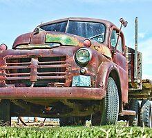 Old Work Truck by blackhorsephoto