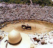 Bull Fighting in Okinawa by Larry Llewellyn