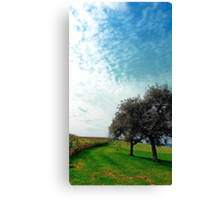 Cornfields, trees and lots of clouds | landscape photography Canvas Print