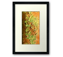 rusty orange Framed Print