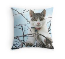 Billy in a Tree Throw Pillow
