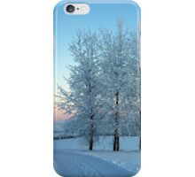 Winter Trees I iPhone Case/Skin