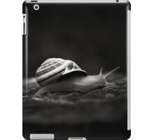 Going East iPad Case/Skin