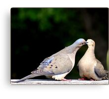 That lovey-dovey feeling Canvas Print
