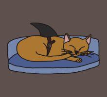 Catfish - Parody by Aplattalypse