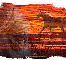 Wildfire by Trish  Bowen