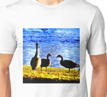 Boosted Geese Unisex T-Shirt