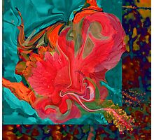 Floral Infusion Photographic Print