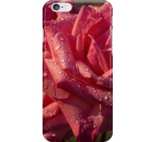 From My Mother's Garden - Three Fabulous Old Fashioned Sweetheart Roses iPhone Case/Skin