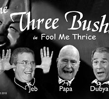 "The Three Bushes in ""Fool Me Thrice"" by EyeMagined"