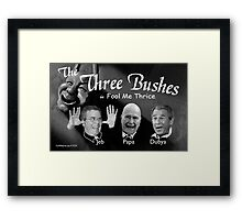 "The Three Bushes in ""Fool Me Thrice"" Framed Print"