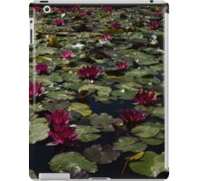 A Profusion of Cardinal Red Waterlilies iPad Case/Skin