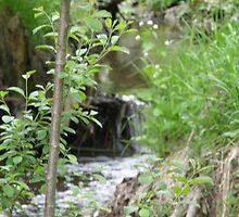 hidden water by boofy45