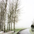 Light Snow by Ludwig Wagner