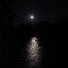 moon lights the way by Steve Lindsay