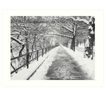 Snowy Lane B&W Art Print