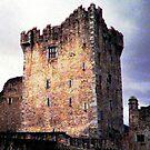 Ross Castle, Kilarney Ireland by AngieDavies