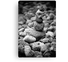feather and stones Canvas Print