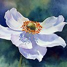 Japanese anemone by Ann Mortimer