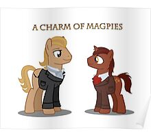 Charm of Magpies ponies Poster