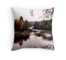 Autumn Falls II Throw Pillow