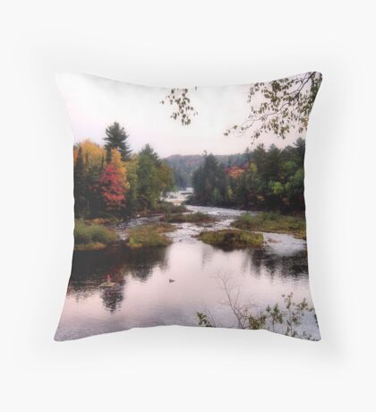 Autumn Falls II Throw Pillow