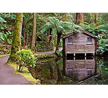 Tranqility by the Lake Photographic Print