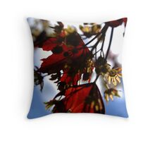 Sign of spring Throw Pillow