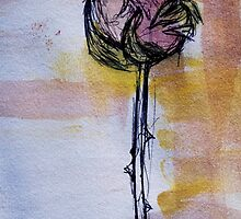 One rose by HannahLstaples