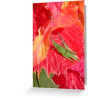 amaranthus and friends Greeting Card
