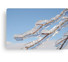 Twigs in ice  Canvas Print