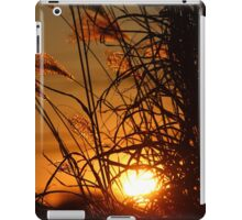 Winter Sunset in the Ornamental Grass iPad Case/Skin