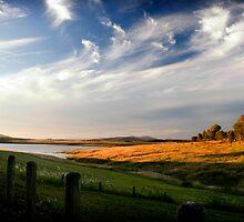Wivenhoe Dam by Alecia Scott